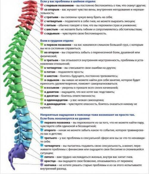 Карта психосоматических причин болезней спины