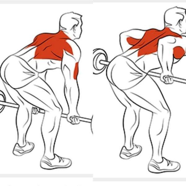 Прокачка спины