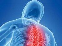 Патология грудного отдела позвоночника
